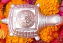 Picture of Parad Meru Yantra on Tortoise For Wealth and Prosperity,Weight 250-300 gms (approx.)
