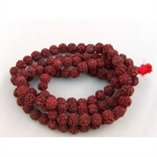 Picture of Rudraksha Mala (108 Xlarge-sized Beads on Unknotted Thread)