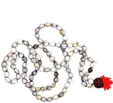 Picture of Vaijanti Mala