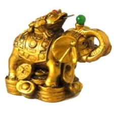 Picture of Small Money Coin Frog on Elelphant
